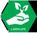 Landscape taman jakarta