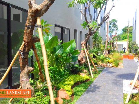 Landscape & renovasi taman jakarta